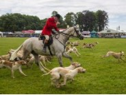 76. The Cotswold Show, Cirencester