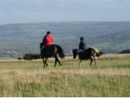 90. Horse riding in the Cotswolds