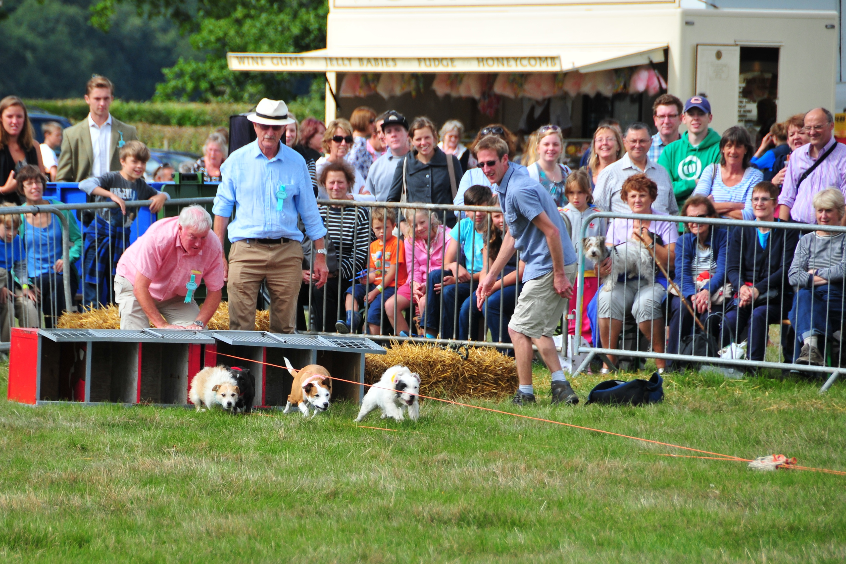 Crowds enjoying the fun at Moreton Show.
