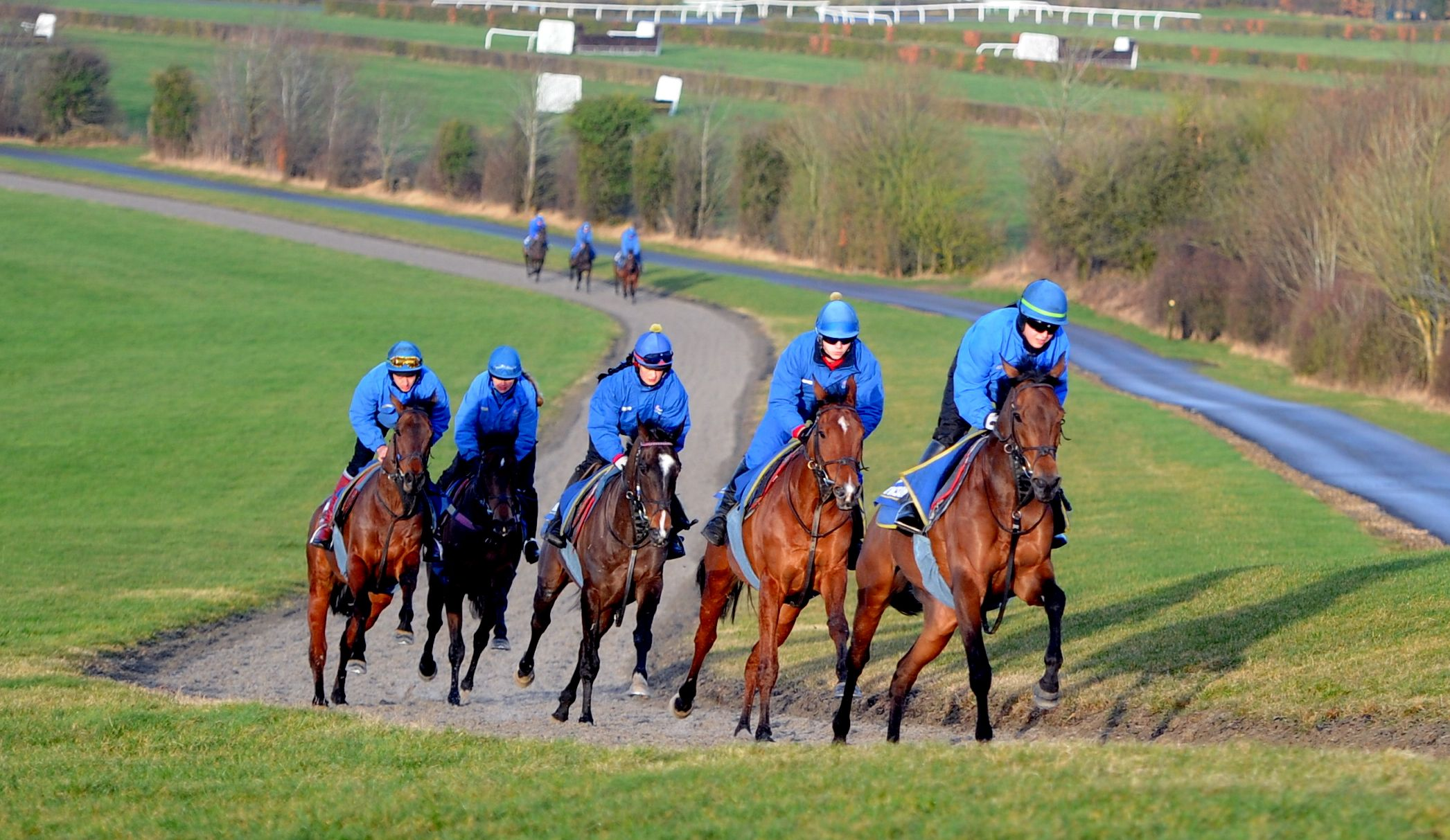 Horses training on the gallops at Jackdaws Castle, Temple Guiting. Picture by Paul Nicholls.