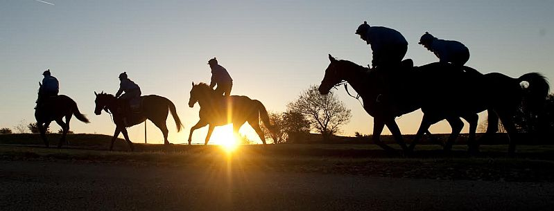 It's an early start for the racehorses at Jackdaws Castle in the heart of the Cotswolds. Picture by Edward Whitaker.