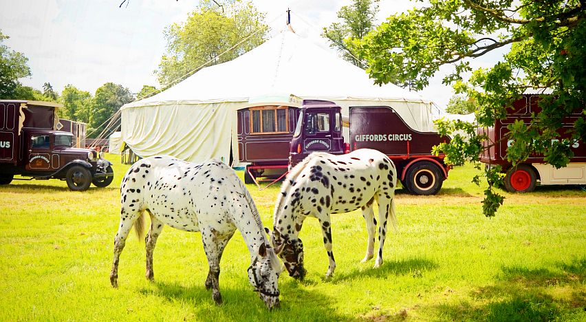 Roll up, roll up...the iconic Giffords Circus wagons.