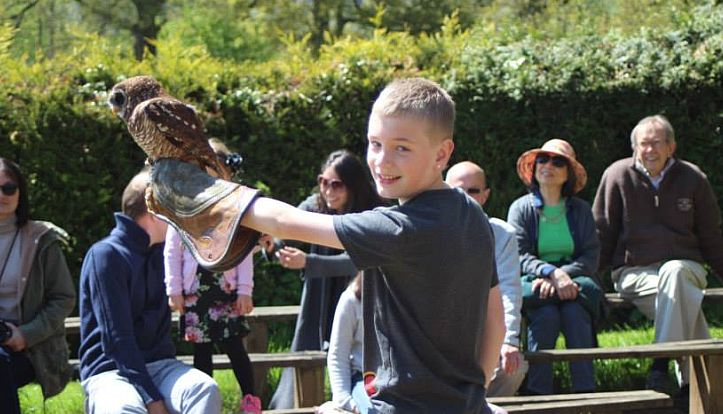 Harvey Sparrow with an owl at the Cotswold Falconry Centre.
