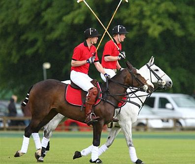 Polo-loving Princes William and Harry have delighted Cotswold crowds with regular appearances playing at Cirencester Park Polo Club.
