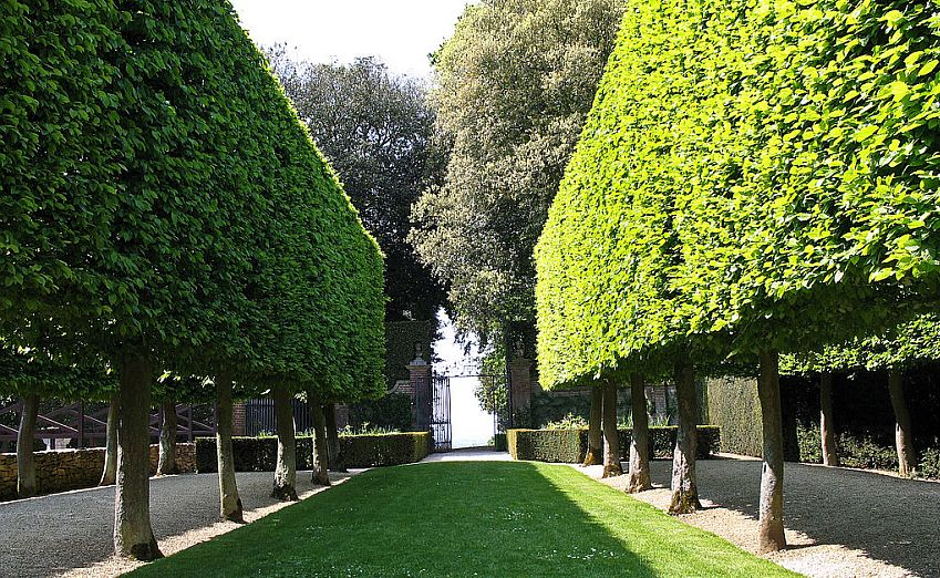 The avenue of trees leading to a gate at Hidcote Manor Garden.