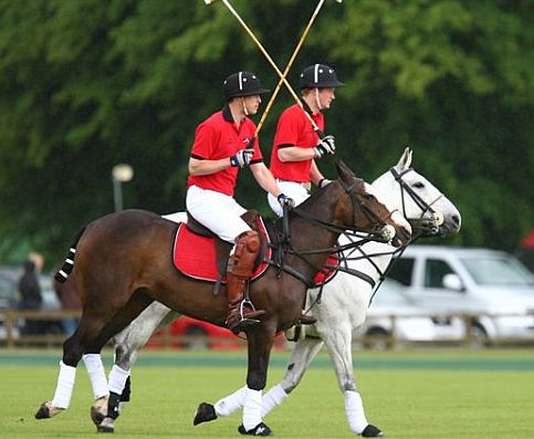 "The young Royals, Princes William and Harry, regularly enjoy playing ""the sport of princes"" in the Cotswolds, pictured here in action at Cirencester."