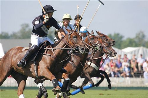 Cirencester Park is one of the country's leading polo venues.