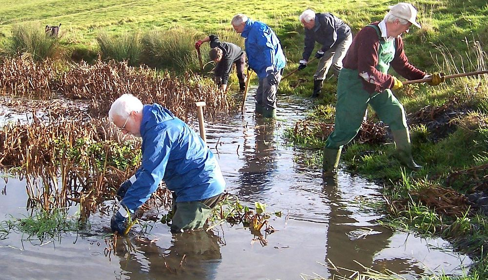 Cotswold Voluntary Wardens clearing a pond at Hawling, near Bourton-on-the-Water. Picture © Cotswolds Conservation Board