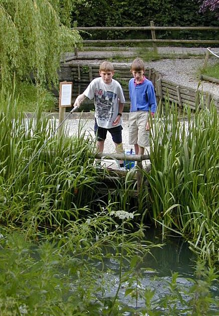 Two boys try their hand at fishing at Bibury Trout Farm.