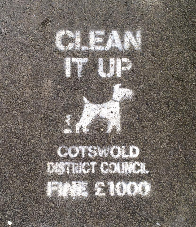 Anti-dog fouling stencils have been temporarily painted on the pavement as part of the campaign.
