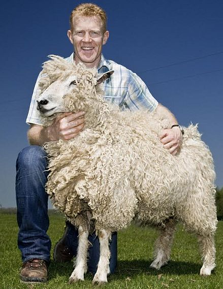 Cotswold celebrity farmer Adam Henson with a Cotswold Lion sheep.