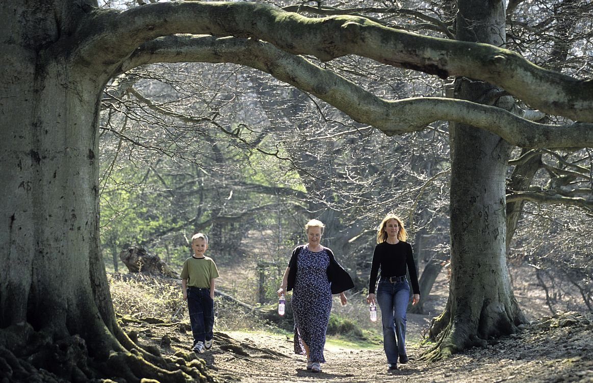 Walking the Cotswold Way through the woods. Picture courtesy Cotswolds Conservation Board.