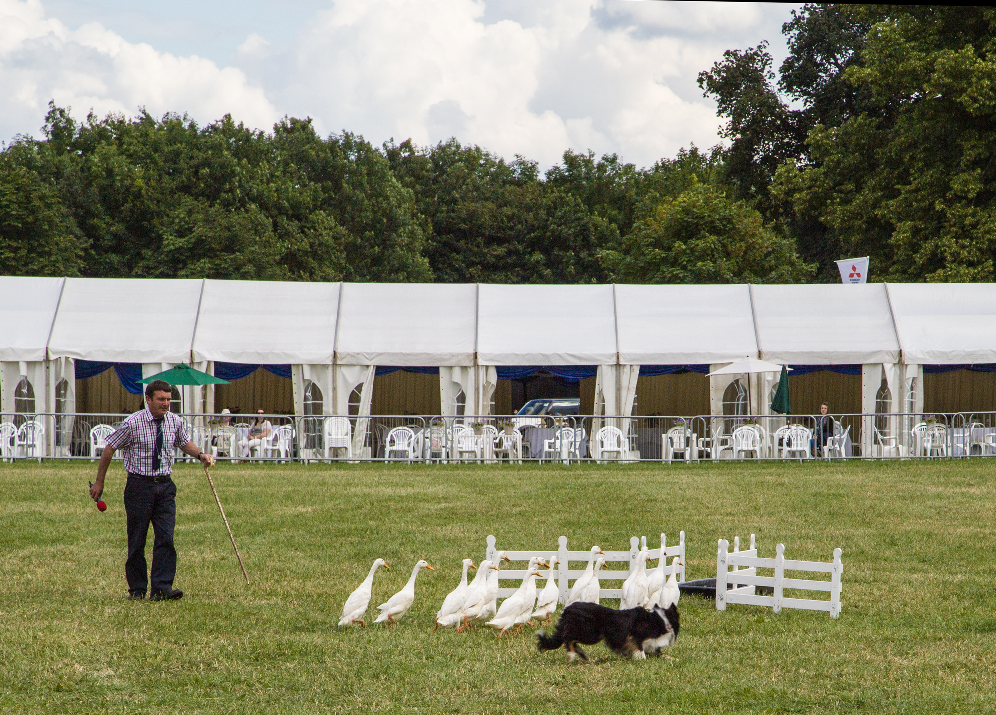 The Cotswold Show & Food Festival takes place at Cirencester Park over the weekend of July 2-3.