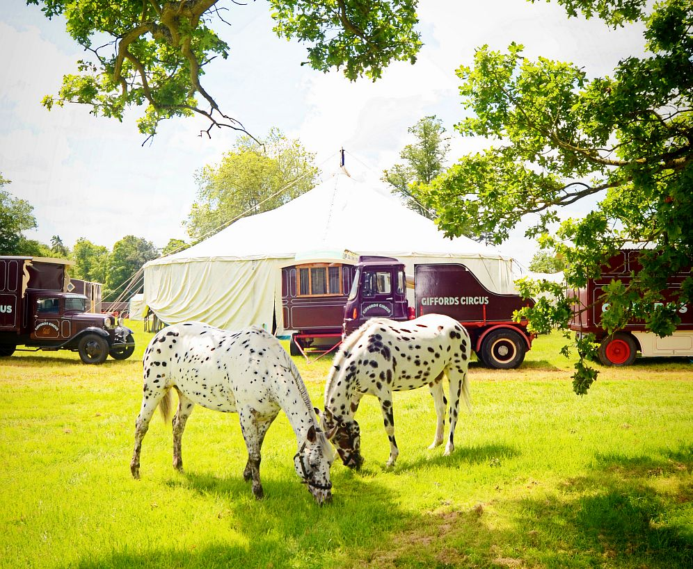 The brilliant Giffords Circus can be found touring around the Cotswolds from May 13 to September 25.