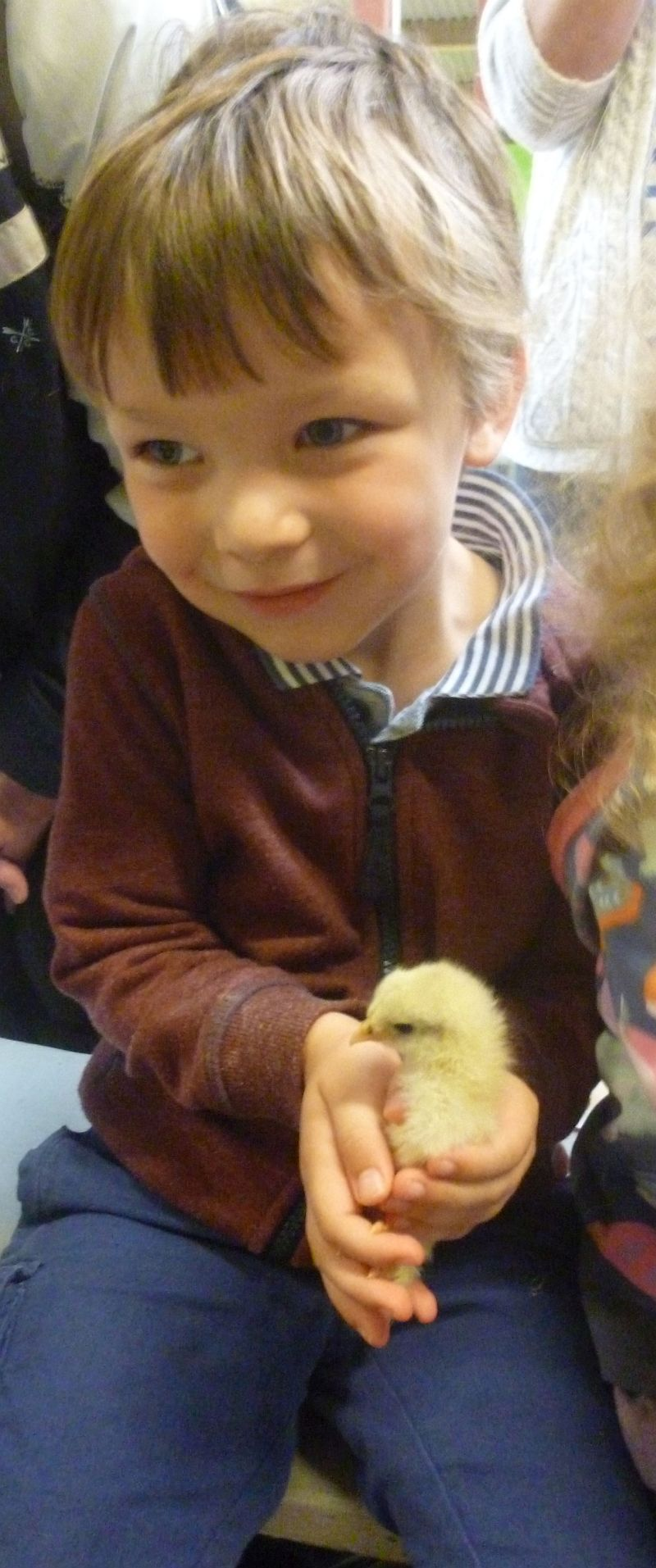 Noah cuddling a young chick...