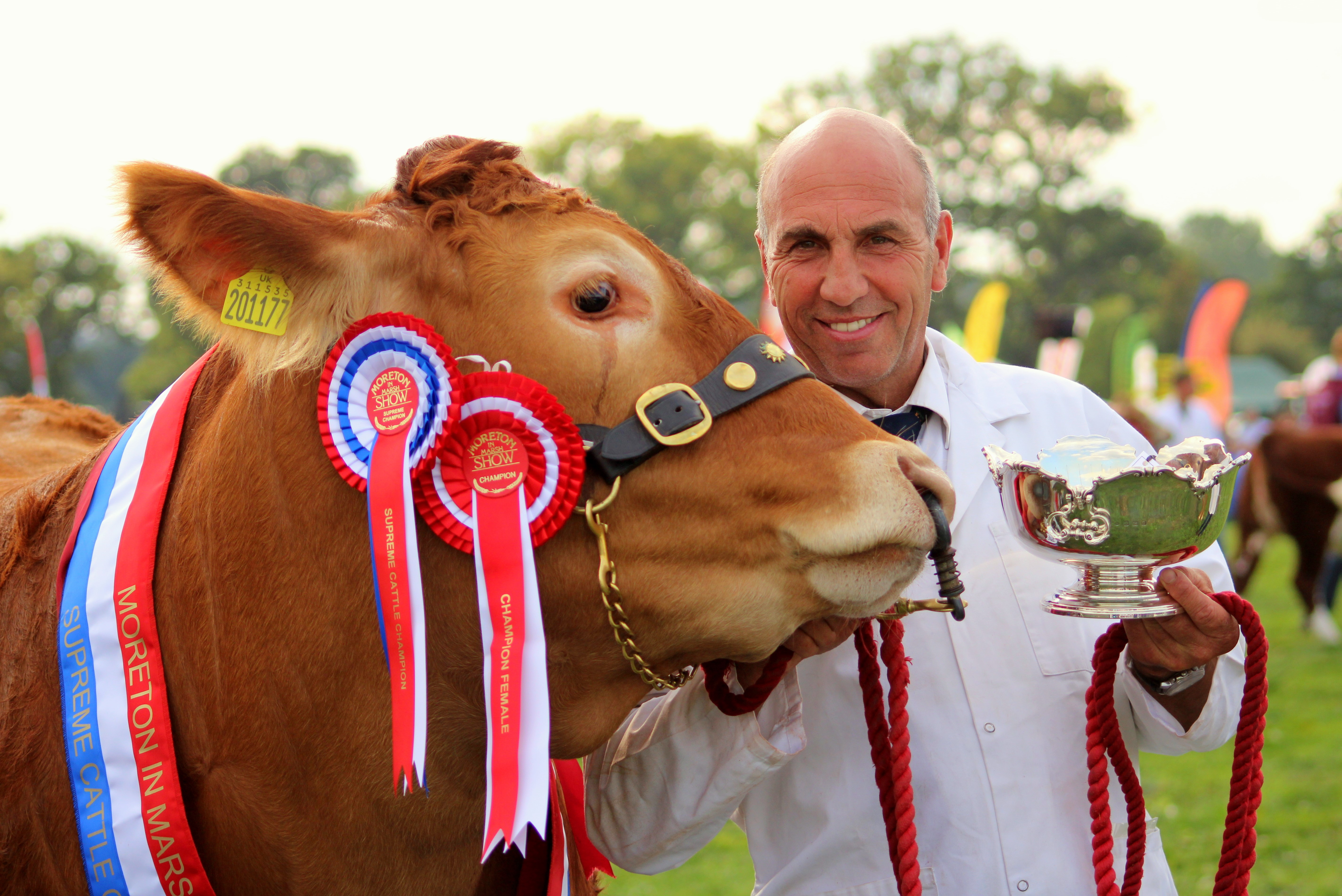 Dinmore Manor Estate farm manager, Richard Bartle with the Selekt Three Shires Trophy and the Supreme Cattle Champion, Dinmore Madonna
